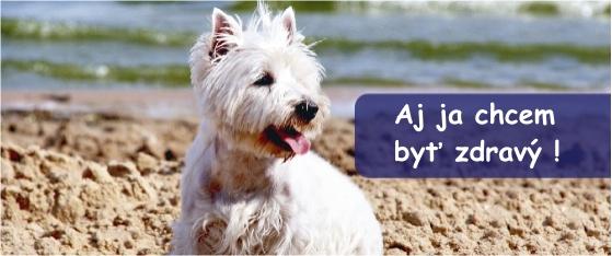fish4dogs krmivo, výhody pre zdravie psa